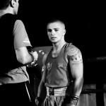 Pugile   Boxer